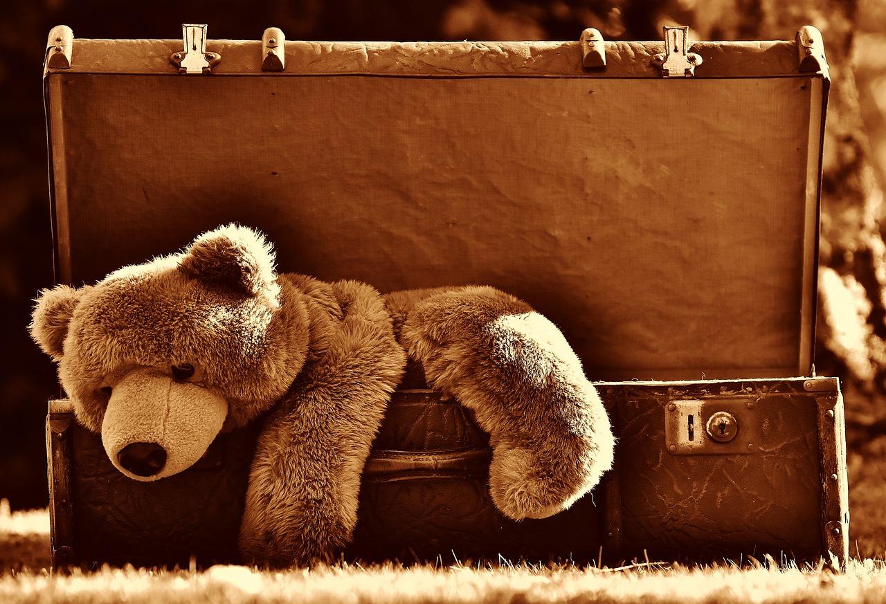 Ereignishorizont Digitalisierung - Teddybär